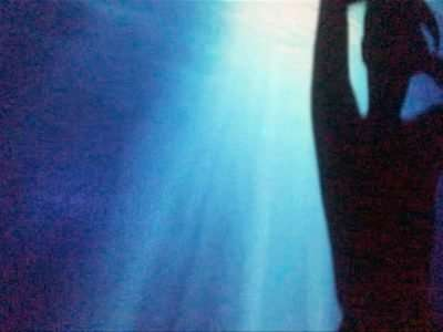 The silhouette of a Fat Black femme dancing with her arms raised above her head. Projected on a wall behind her is dark blue ocean water with rays of light shining from the surface.