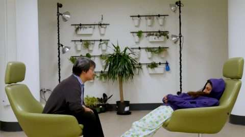 Two people with medium brown skin and black hair sit facing each other in green chairs. On the left, a trans Taiwanese person leans forward toward an Indian woman wearing pajamas, who has slid halfway out of her chair. Behind them is a symmetrical array of a potted plants and two floor lamps.